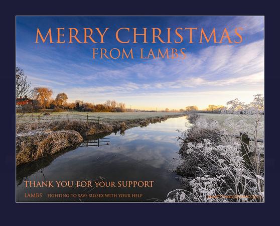 Lambs 20101226-christmas_165-Edit-2