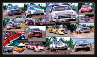 Goodwood 2012 Montage _rally