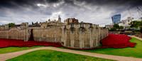 The Tower of London Poppies -7602