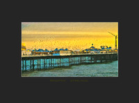 STARLINGS ON BRIGHTON PIER