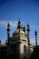 Brighton pavilion  collection (18 of 134)