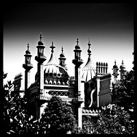 Brighton pavilion  collection (8 of 134)