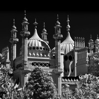 Brighton pavilion  collection (6 of 134)